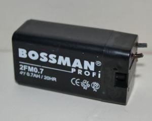Аккумулятор Bossman LA 407 2FM0,7 (4V/0,7Ah) (28х21х56)